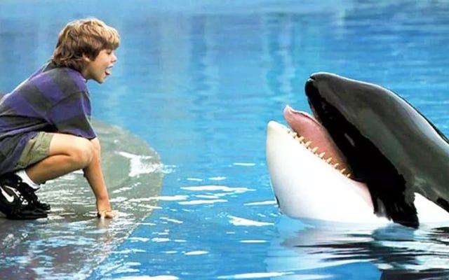 Montrez à votre enfant qu'aucun animal n'a été blessé dans les films populaires