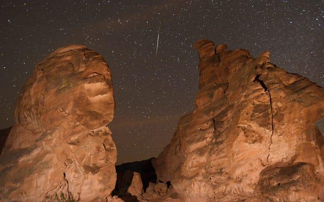 月曜日の夜のこと座流星群の見方