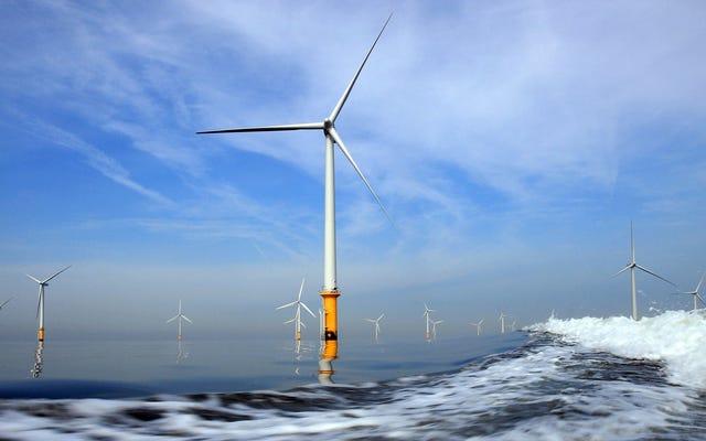 На этой неделе администрация Трампа провела рекордную сделку по аренде морской ветроэнергетики