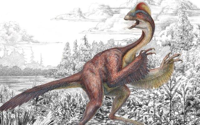 恐竜はナンキンムシも持っていた