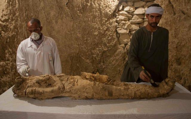 Des décennies après la découverte, une momie de 3500 ans retrouvée dans une tombe égyptienne