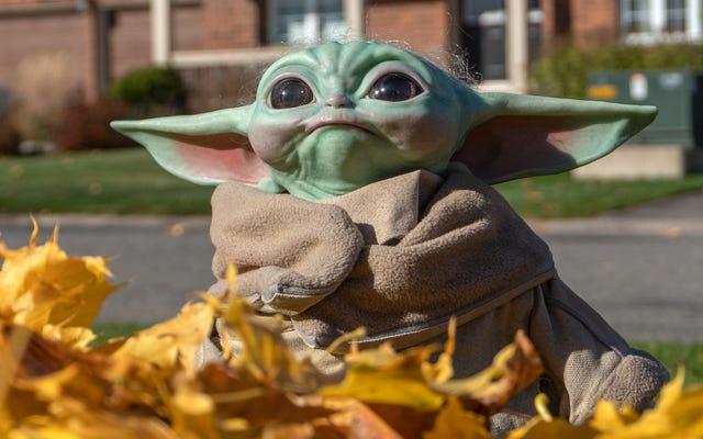 Clan Kita Akhirnya Lengkap Dengan Replika Baby Yoda Koleksi Tontonan Yang Cantik