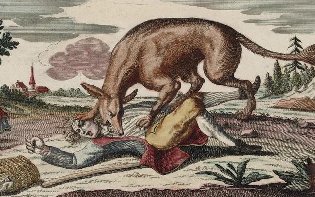 ジェヴォーダンの獣:18世紀のフランスで恐怖をまき散らした謎の生き物についての真実