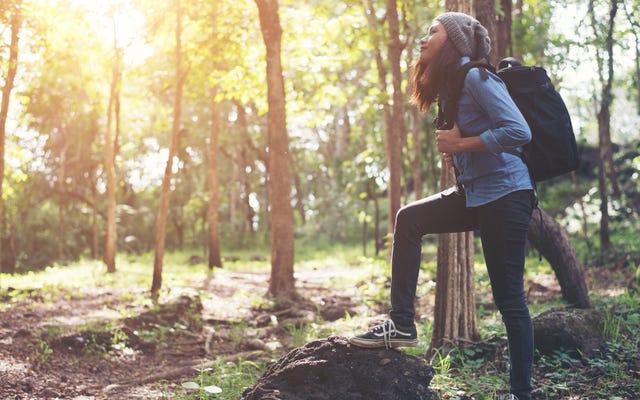 ハイキングを計画して新鮮な空気を取り入れ、休日のストレスを解消しましょう
