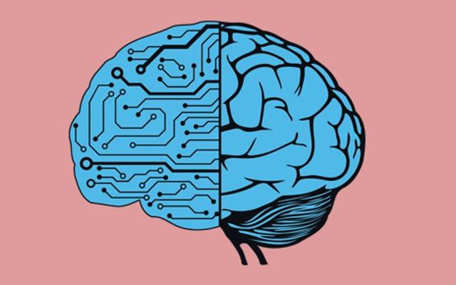 Google'ın Sinir Ağı Sohbet Robotu Felsefeyi ve BT Sorunlarını Tartışabilir