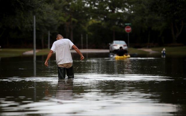 E. Coli llega a 135 veces el límite seguro descubierto en hogares de Houston cuando los residentes regresan después de Harvey