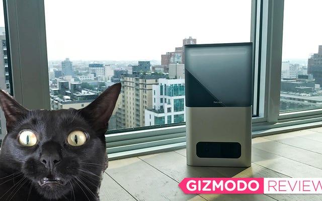 Cette caméra Treat a posé des problèmes de confiance à mon chat