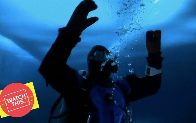 Due anni dopo March Of The Penguins, Werner Herzog ha prenotato il suo viaggio in Antartide