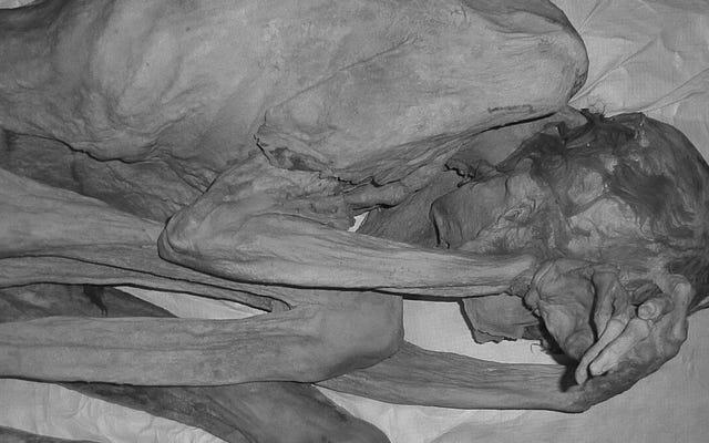 Tato tertua di dunia berusia 5000 tahun, dipakai oleh mumi Mesir