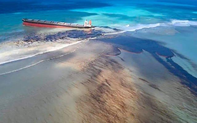 座礁した船が油を漏らし、モーリシャスが環境危機に直面