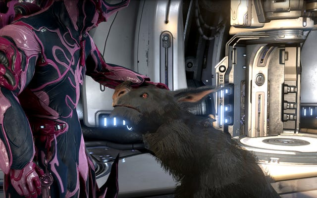 Warframe Guilts Me Into Playing By Making My Dog Hate Me, And I Don't Love It