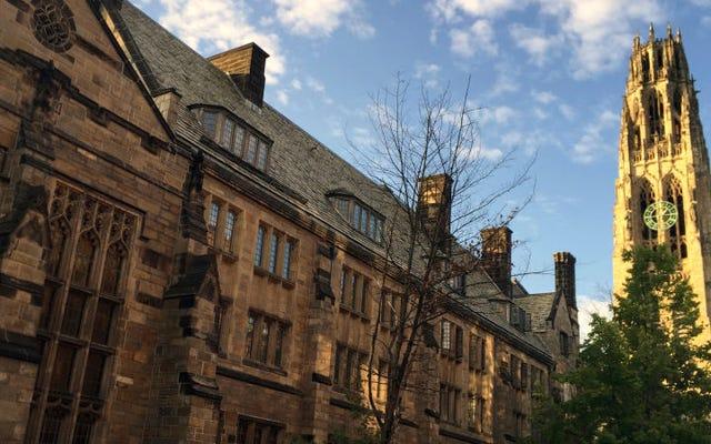 Alunos e um professor de Yale tiraram uma selfie com duas cabeças humanas decepadas durante uma oficina de medicina