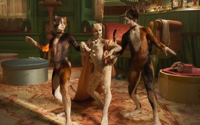 猫は、それほど賞を受賞していない映画についてのポッドキャストであるThis Had OscarBuzzでひっかかれています