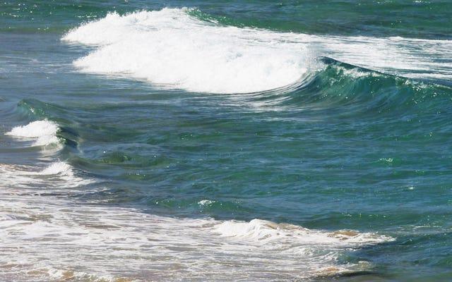 Kuburan Massal Purba Bisa Diisi Korban Tsunami