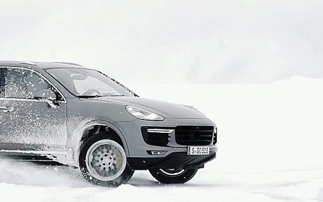 雪の中で横向きのカイエンの平和な美しさを見よ