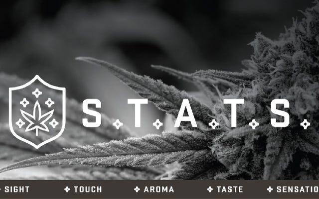 STATS評価ガイドで大麻愛好家になる