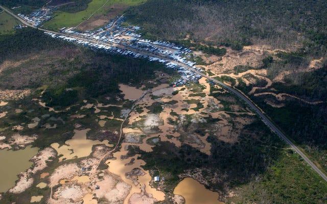 Sự tàn phá của công ty khai thác trên Amazon lan rộng ra ngoài các khu vực cho thuê