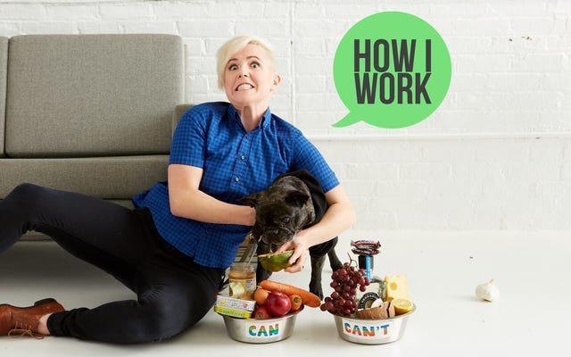 Je suis Hannah Hart, la créatrice de My Drunk Kitchen, et c'est comme ça que je travaille