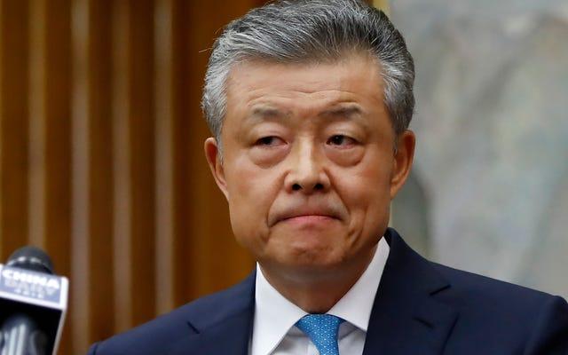 चीनी राजदूत के ट्विटर अकाउंट को पोर्न वीडियो, चीन कॉल फॉर इन्वेस्टिगेशन पसंद है