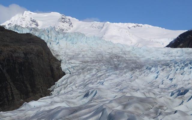 Besoin d'un rappel que tous les glaciers fondent? Il y a un bot Twitter pour ça