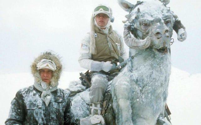 Что делать, если в вашем офисе слишком холодно