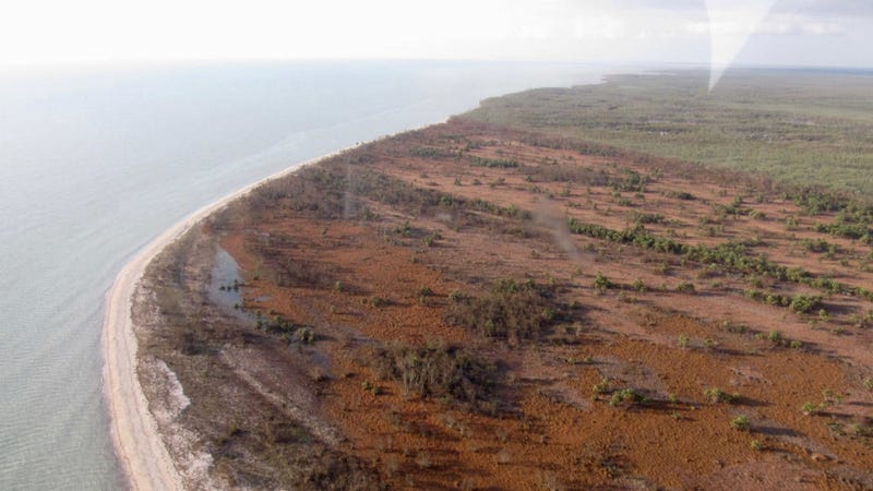Wracks of seagrass deposited along Northwest Cape Sable after Hurricane Irma tore through earlier in the week. Image: Steve Davis
