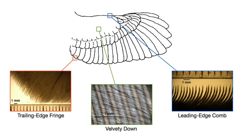 Illustration for article titled Tomorrow's wind turbines could look like enormous owl wings