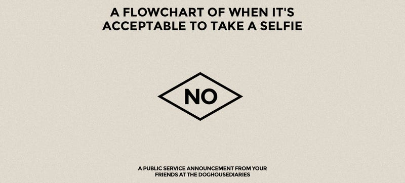 A Simple Flowchart to Work Out If You Should Take a Selfie