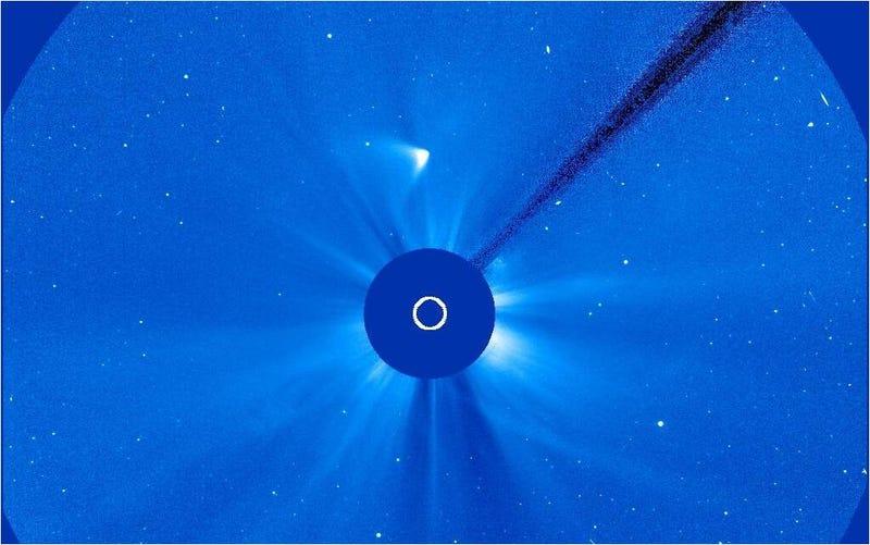 Illustration for article titled El cometa ISON podría haber sobrevivido a su encuentro con el Sol