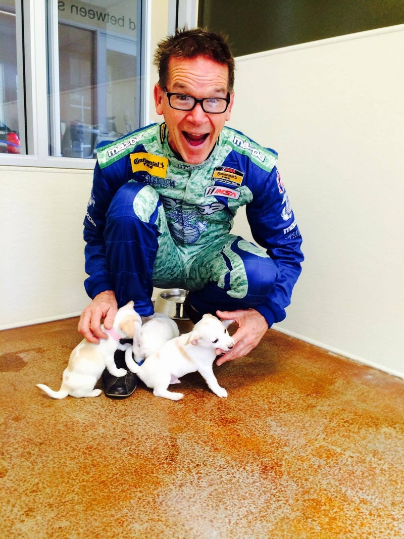 Illustration for article titled Is there anything cuter than Randy Pobst with puppies?
