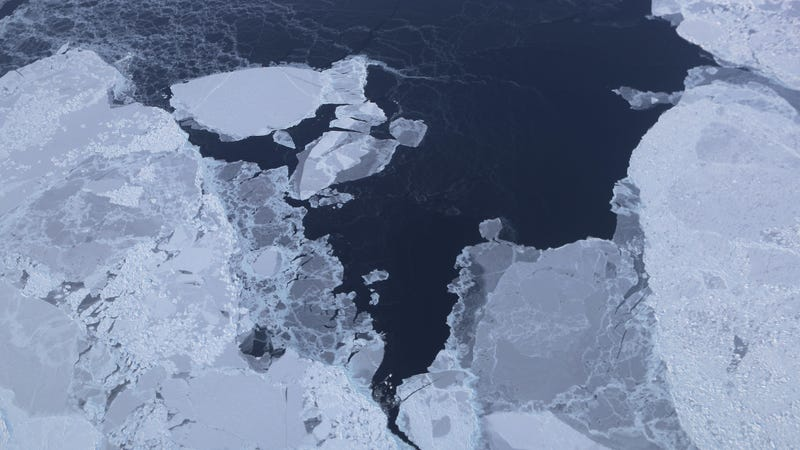 Illustration for article titled The Last of the Arctic's Old Sea Ice Is on the Verge of Vanishing