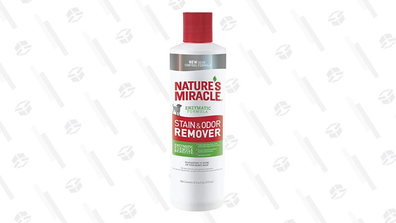 Nature's Miracle Stain and Odor Remover Pour, 16 Oz. | $1 | Amazon
