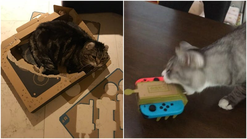 Illustration for article titled Cats Vs. Nintendo Labo