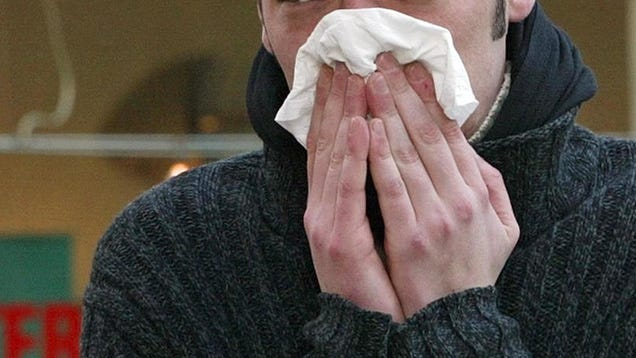 Chronic Stuffy Nose Linked to Changes in Brain Activity, Study Finds