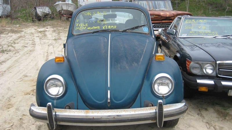 Illustration for article titled FOTS VW Beetle Gallery