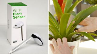 Illustration for article titled W-fi Sensor Gives Your Dying Plants a Voice To Plead For Help