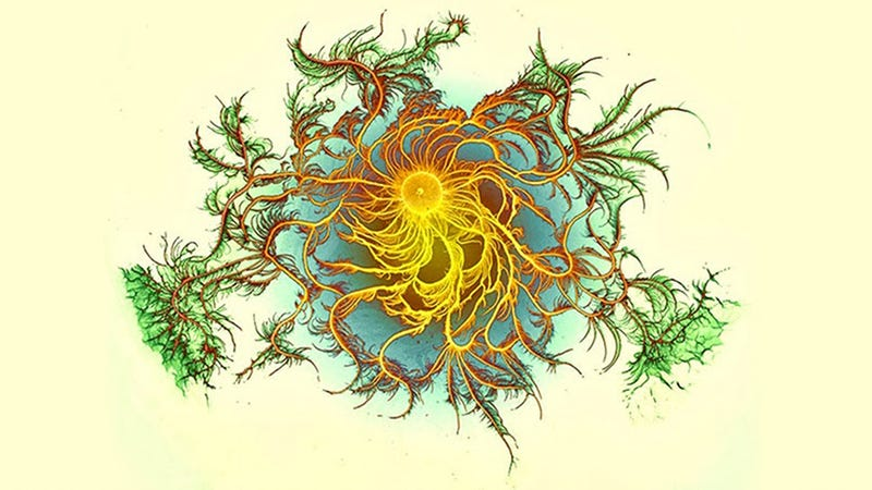Illustration for article titled This Psychedelic Art Is Actually Bacteria