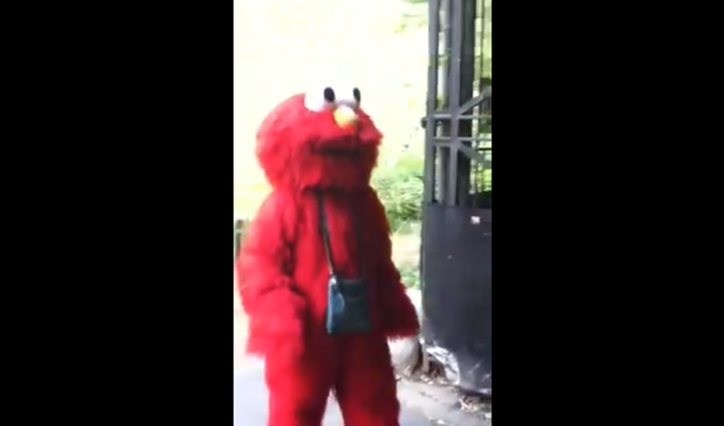 Illustration for article titled Anti-Semitic Elmo Tries to Extort $2 Million from the Girl Scouts