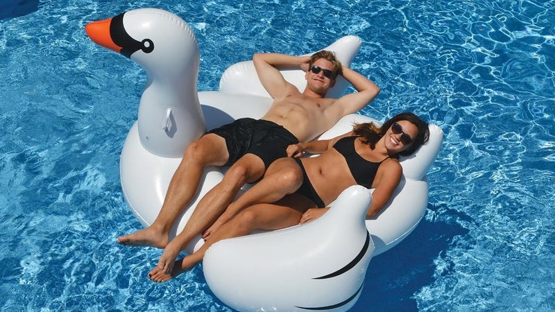 International Leisure Giant Swan, $24