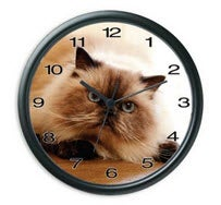 Illustration for article titled Avail Clock Dial Inserts for Easy Personalization