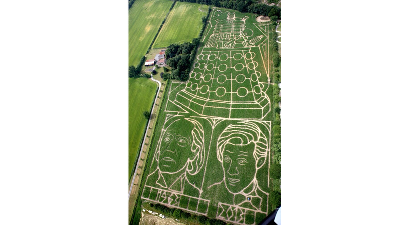 Illustration for article titled Why yes, that is Matt Smith's face cut into a field in York!