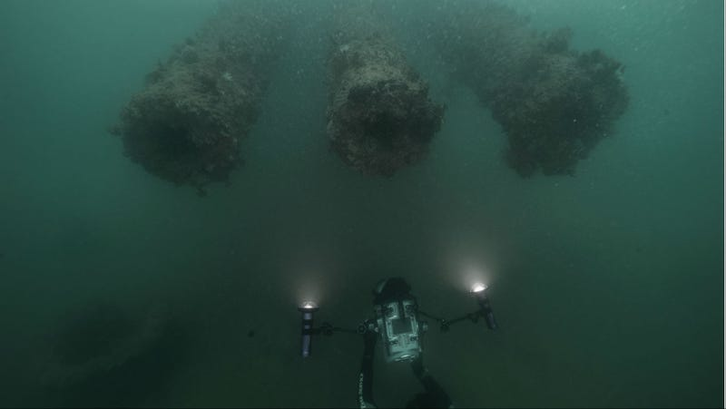 Illustration for article titled Dive into This Digital USS Arizona in the Name of Conservation