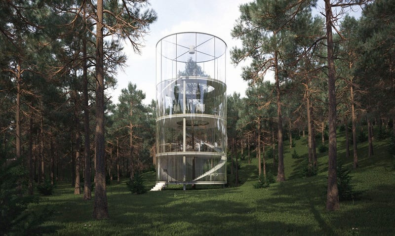 Illustration for article titled A tree grows inside this cylindrical transparent house