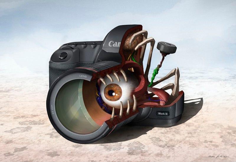 Illustration for article titled The Secret Guts of DSLR Cameras and Turntables