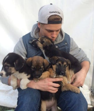 Illustration for article titled Gus Kenworthy's Love For Puppies Has Him Stuck In Sochi