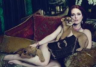 Illustration for article titled Julianne Moore And Lion Cubs Is The Cutest Thing You Will See Today