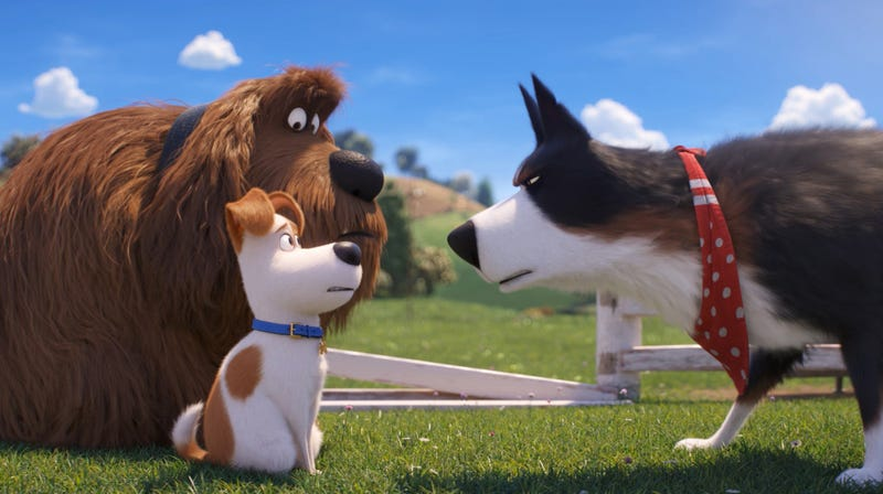 Illustration for article titled The mini-adventures of Secret Life Of Pets 2 belong on a disc of bonus features, not in theaters