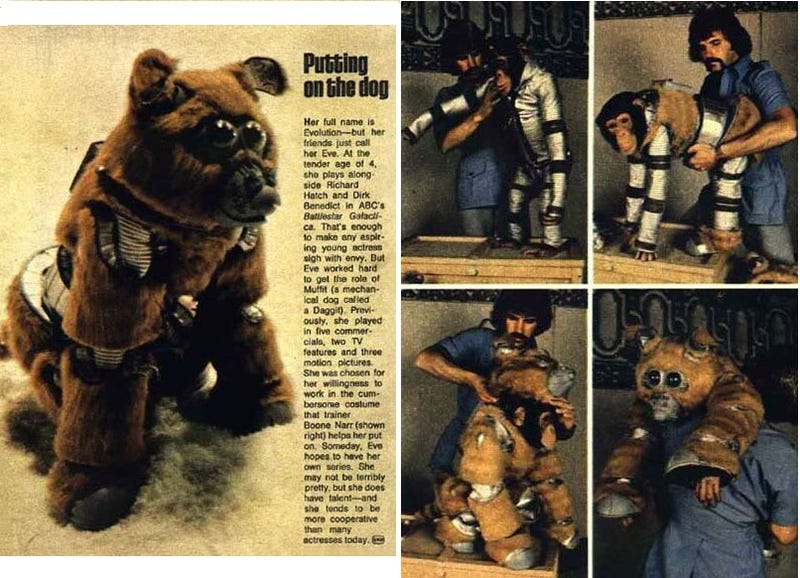 Illustration for article titled The Robot Dog From Battlestar Galactica Was A Chimp In Costume
