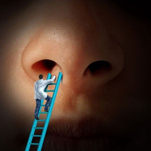 Illustration for article titled Nose