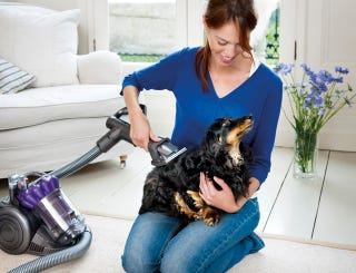 Illustration for article titled Why Bother Vacuuming the Floors When You Can Just Vacuum the Dog?